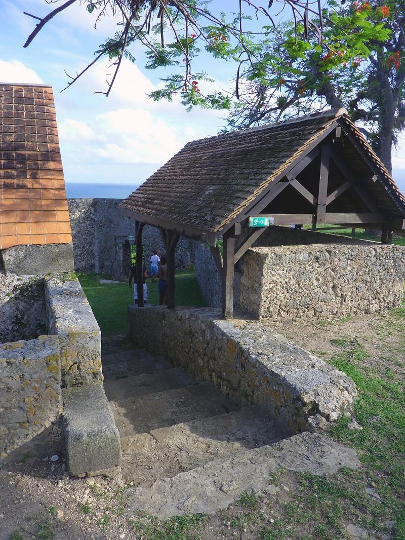 Fort Fleur Da A Pa C E Guadeloupe Le Guide
